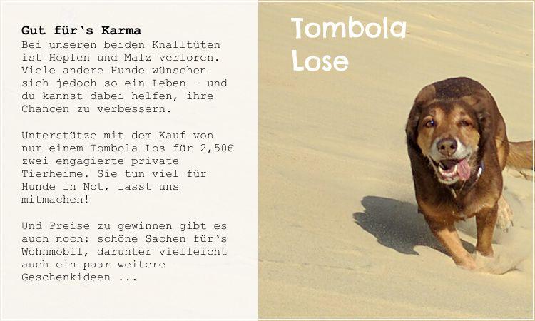 wohnmobil-tombola-lose