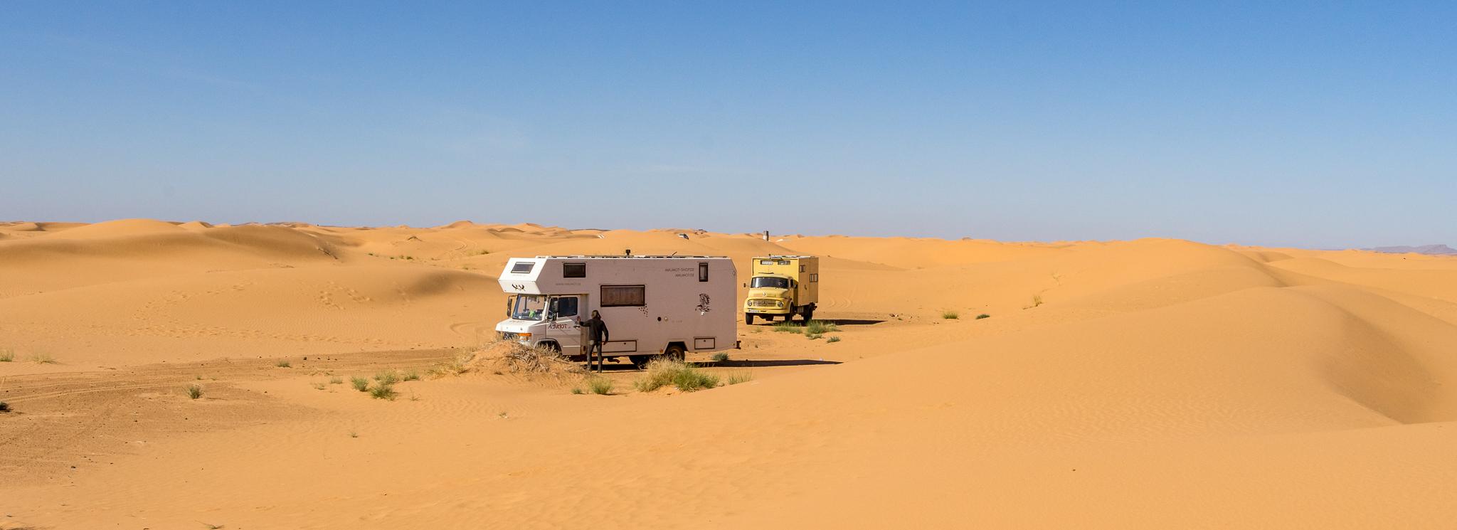 Marokko IV: Erg Chebbi – Motorkamele im Wüstensand