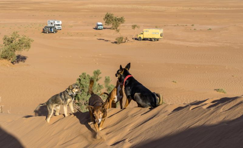 Reiseberichte Wohnmobil Marokko