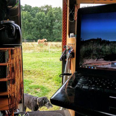 Die Freiheit liegt auf dem Rücken der Pferde? Oder steht direkt neben einer Pferdekoppel.