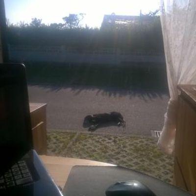 Ein Städtchen in Galizien: Sonne tanken.