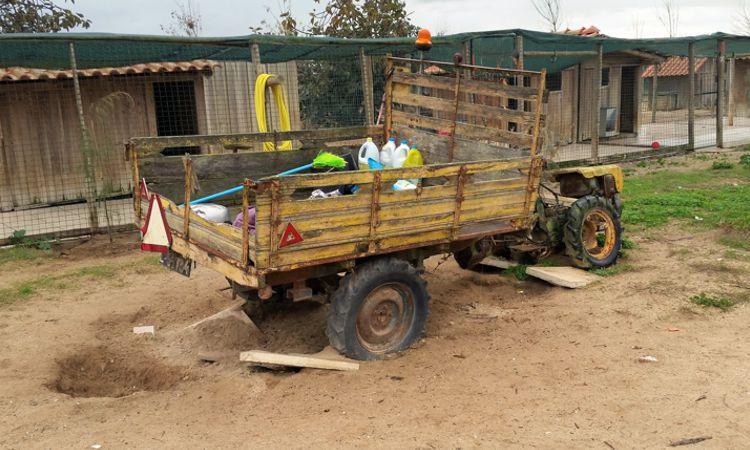Grabungsarbeiten unterm Fahrzeug