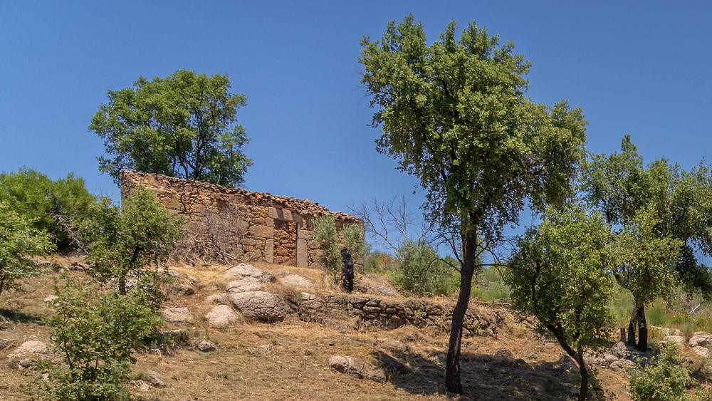 Land mit Ruine in Portugal