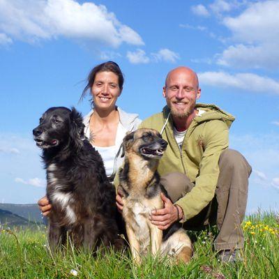 Nima, Steve und Hunde