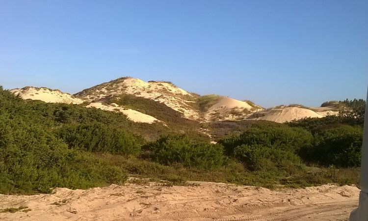 Einer der schönsten Dünen-Strandplätze überhaupt: Praia do Malhao