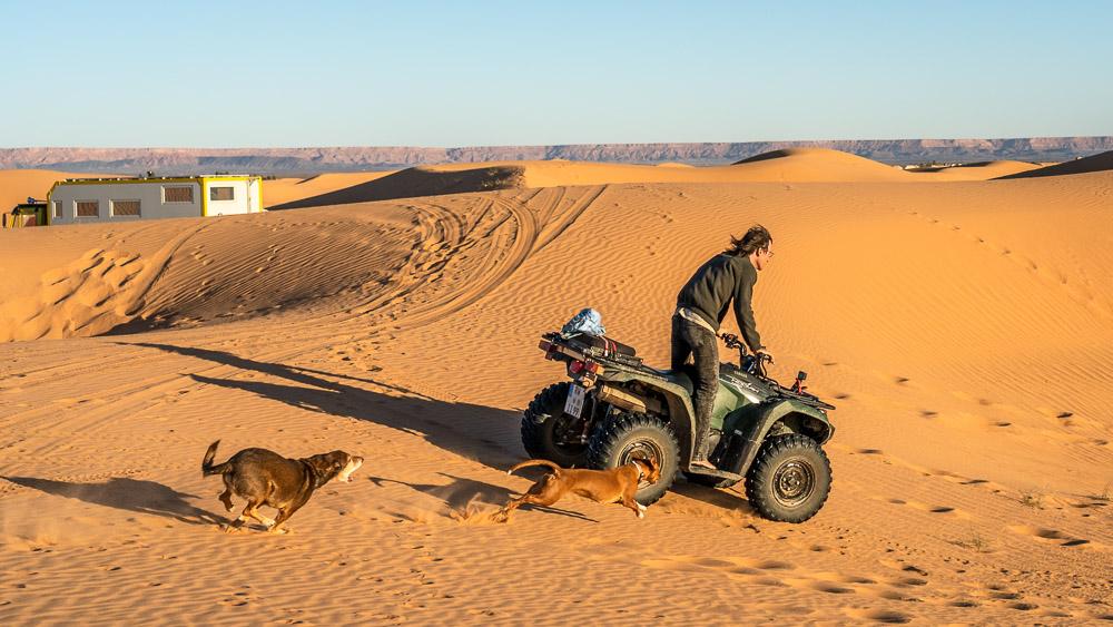 Wüste: im Weichsand mit dem Quad
