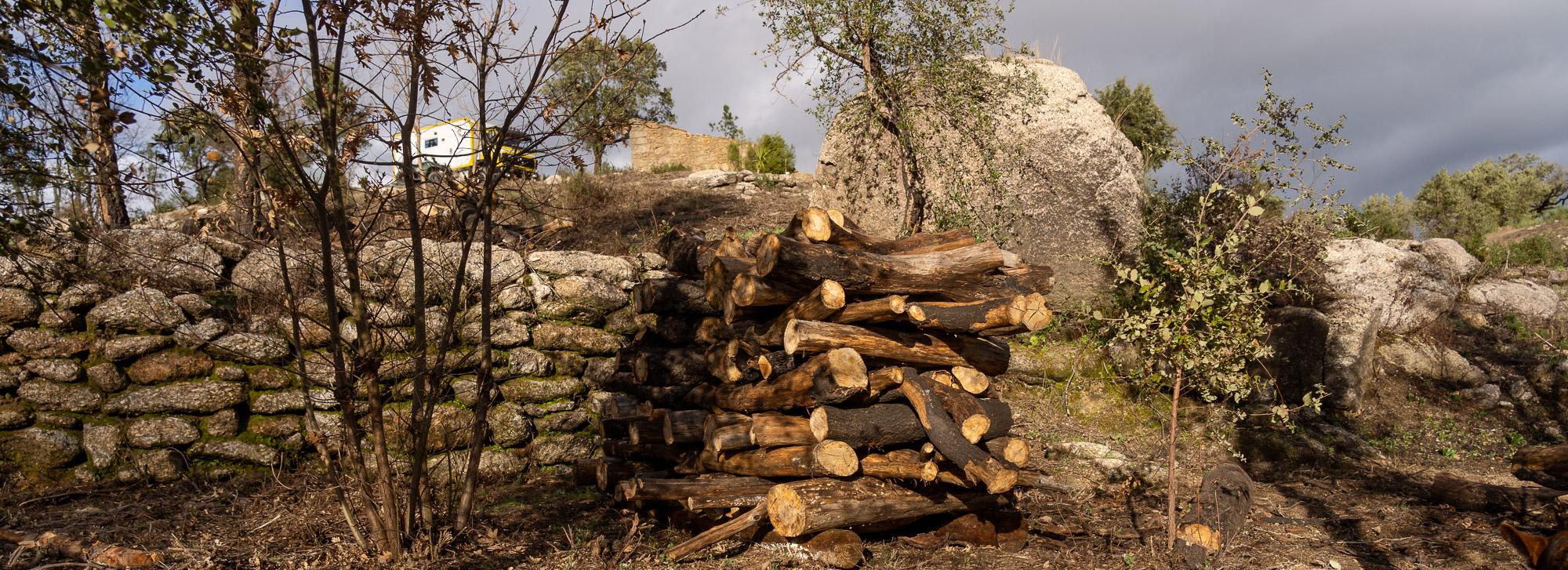 Quinta Prazera | Arbeiten im Quarantänelager – oder Quarantäne im Arbeitslager?