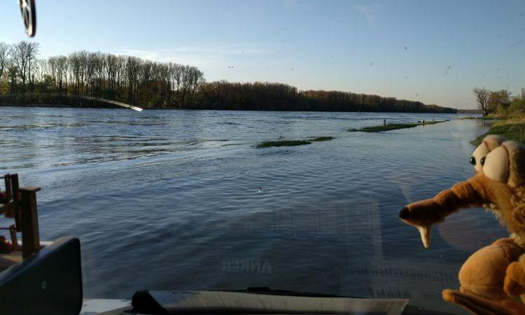 Rhein mit Hochwasser.